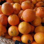 Portocale Parafrutas